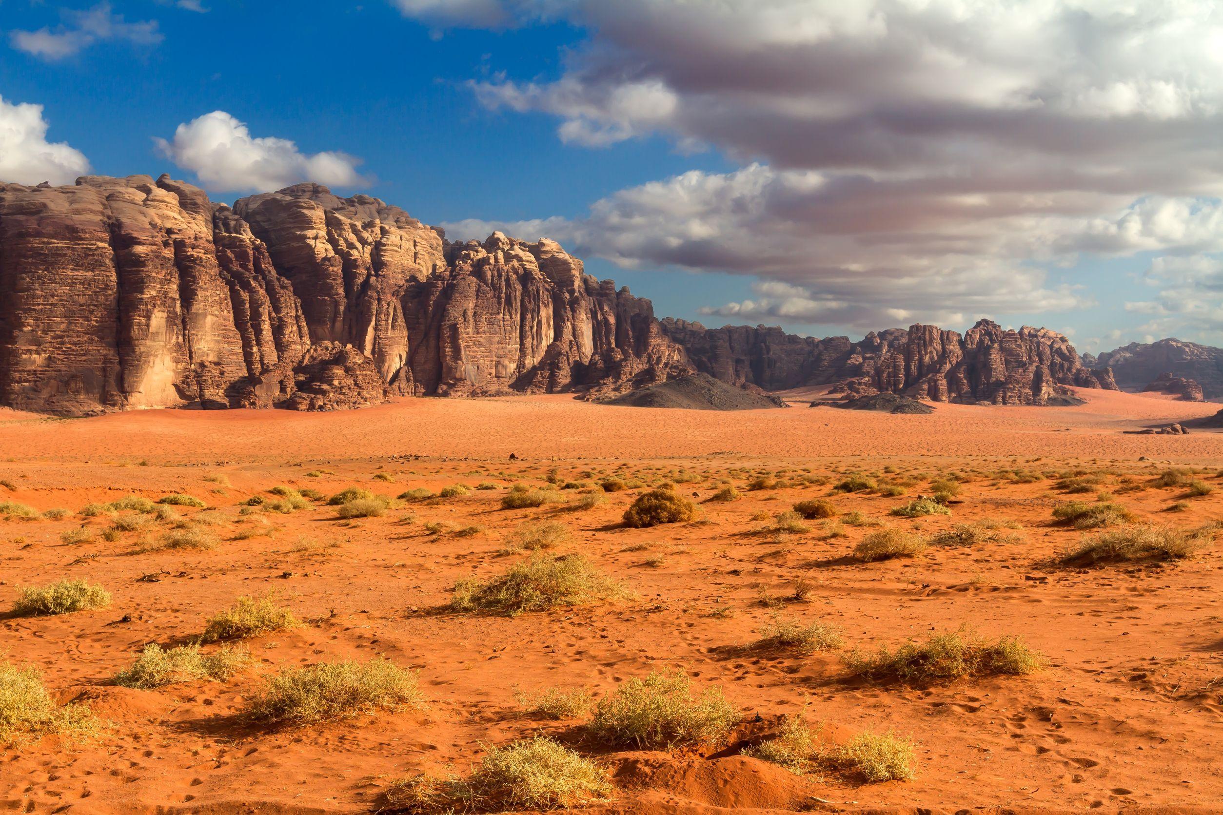 desert landscape - google