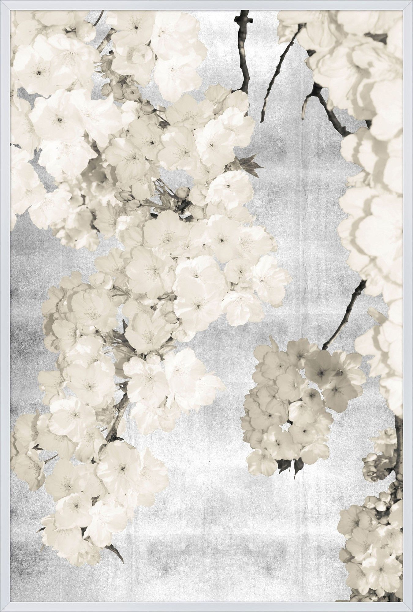 Silver Blossoms Floral Lillian August Our Product Blossoms Art Art Graphic Art Print