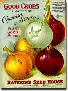 Seed Catalog Cover.  Love the colors on these onion.
