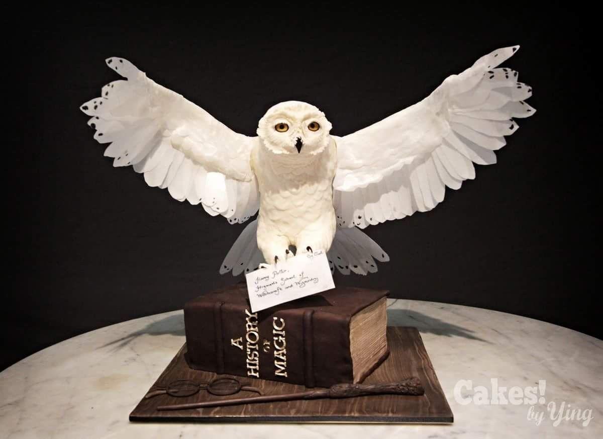 Harry Potter Cake Harry Potter Geburtstagskuchen Hedwig Harry Potter Eule