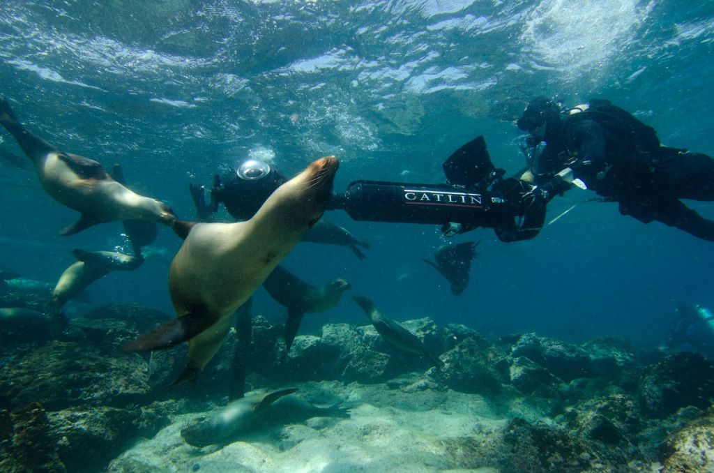 Google takes street view trekker and street view and tech google takes street view trekker and google underwaterunderwater worldgalapagos gumiabroncs Images