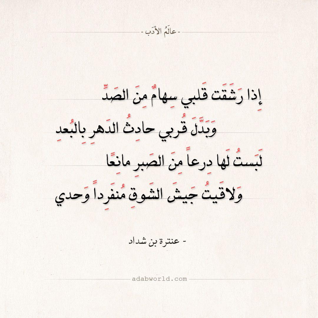 شعر عنترة بن شداد وبت بطيف منك يا عبل قانع عالم الأدب Words Quotes Pretty Words Arabic Quotes