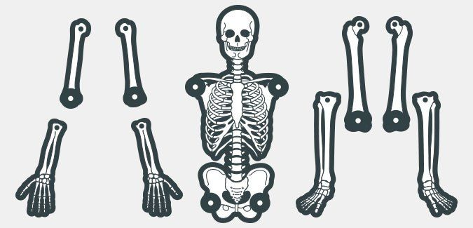 A printable skeleton template in various colours and two for Skeleton template to cut out