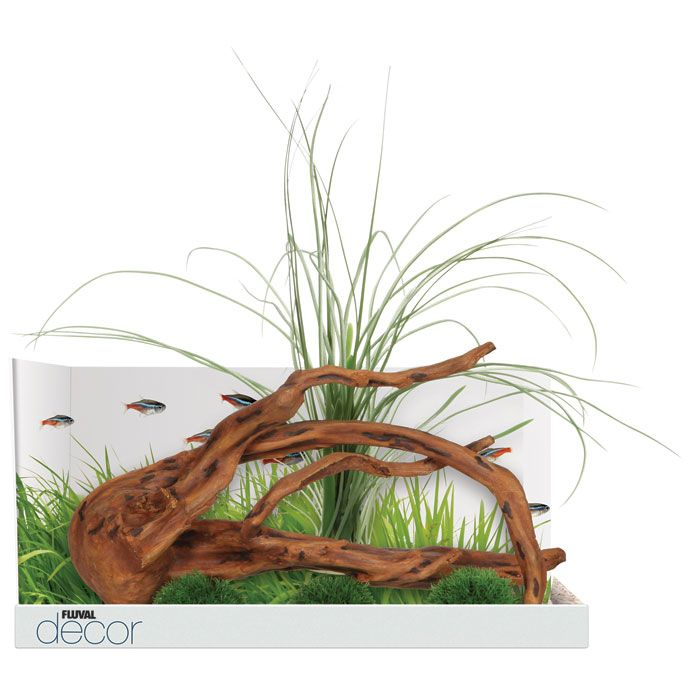 Fluval Décor Mopani Wood with 3 Moss Balls Garden in the