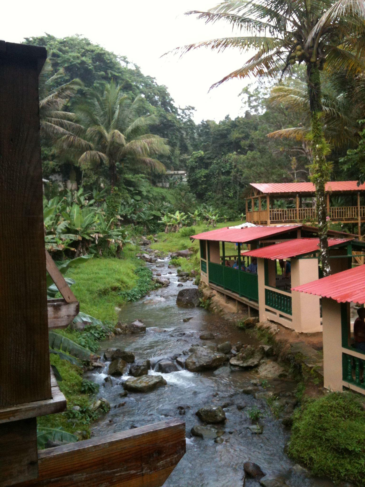 Guavate, Puerto Rico | Places & Coffee Shop. Puerto Rico ...