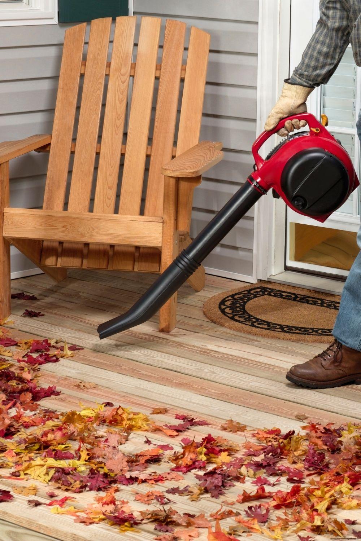 What Is A Good Cfm For A Leaf Blower Leaf Blower Blowers Leaf Blowers