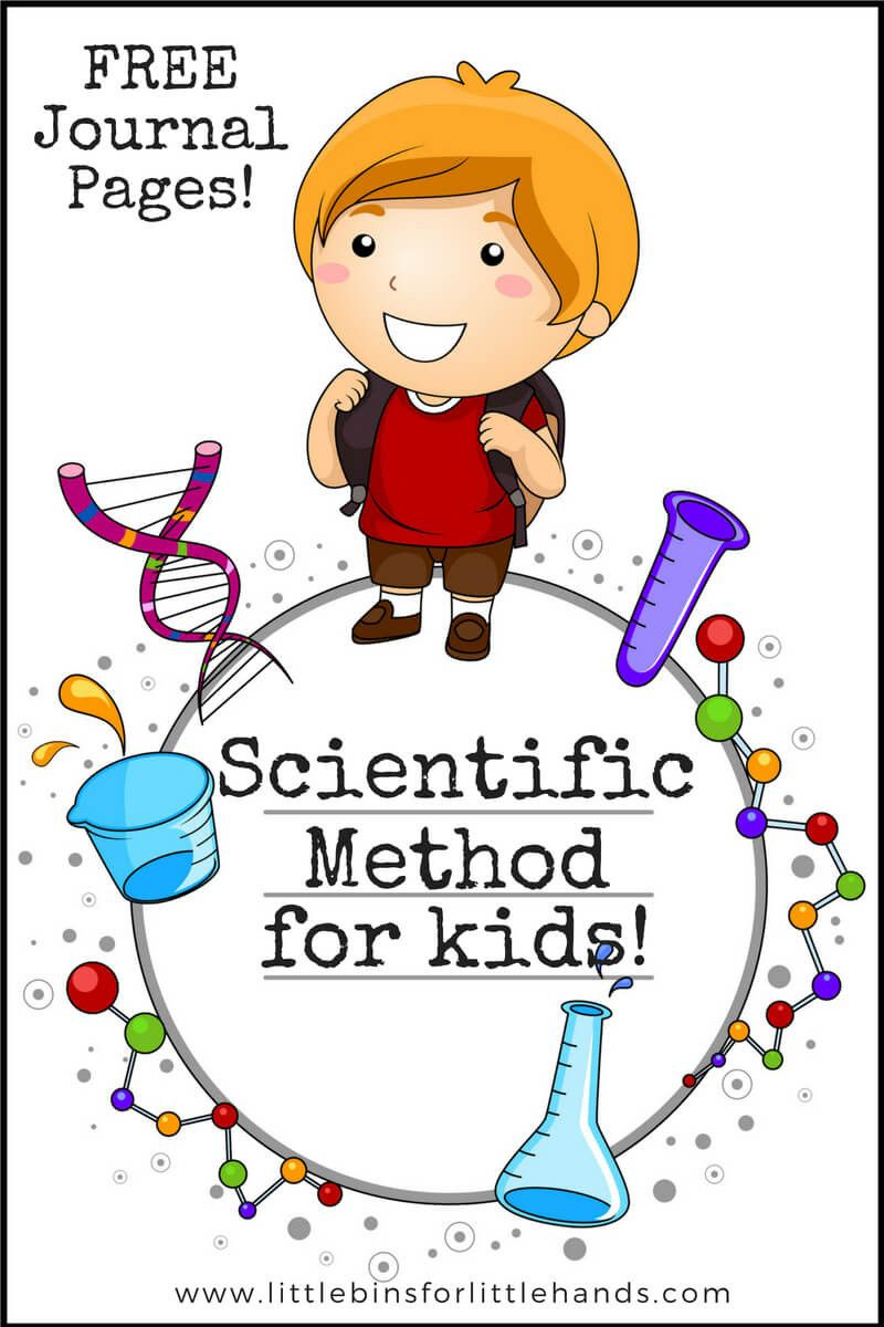 hight resolution of Scientific Method 3rd Grade Worksheet in 2020   Scientific method for kids