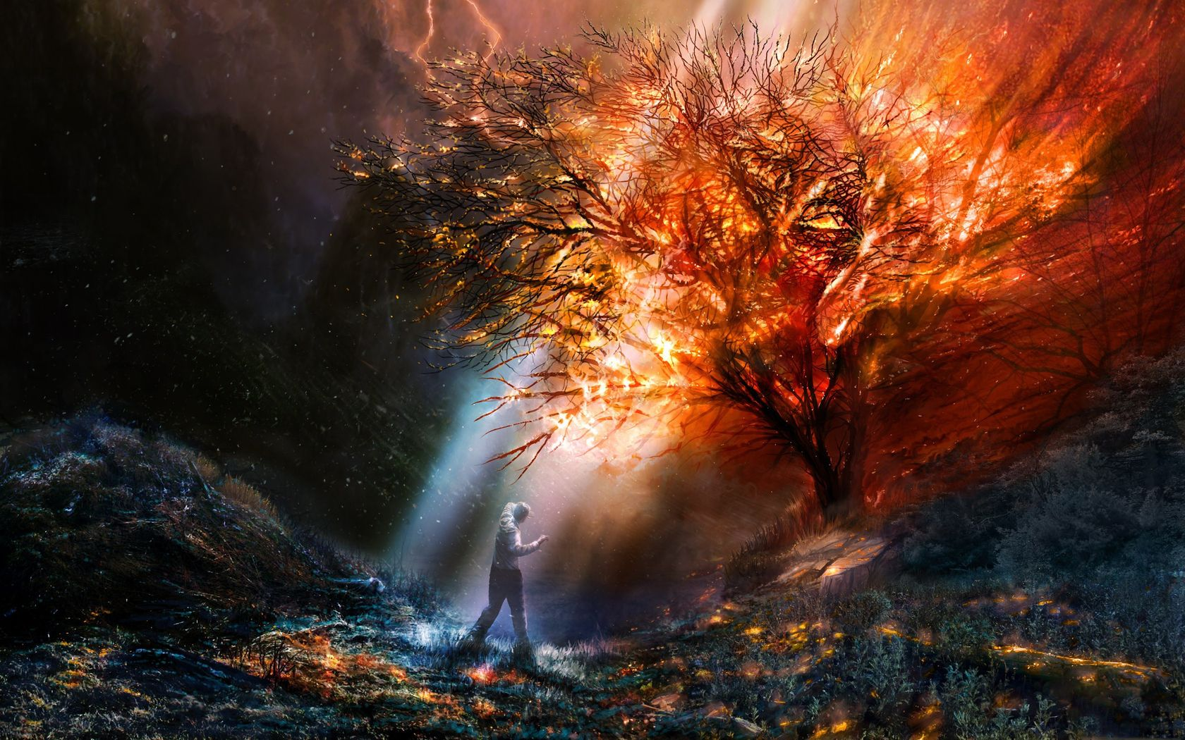 Download Wallpaper Fire Tree Light One Free Desktop Wallpaper In The Resolution 1680x1050 Picture 377937 Fantasi