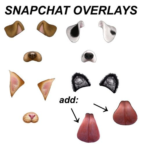 Overlay Edit And Template Image Overlays Snapchat Filters Png Snapchat Dog Filter
