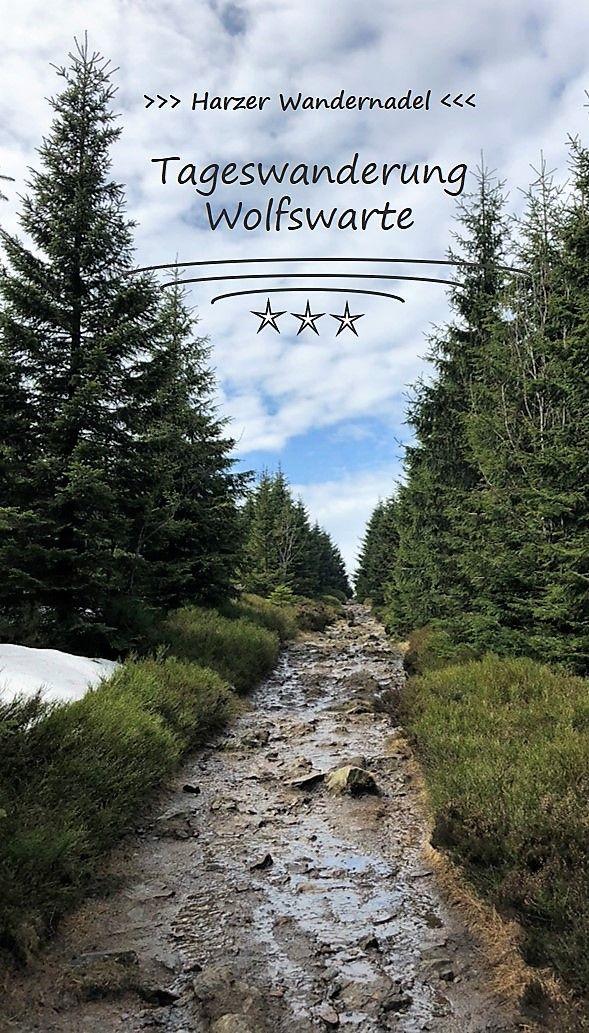 Harzer-Wandernadel – 2. Tour - Hinauf zur Wolfswarte #naturallandmarks