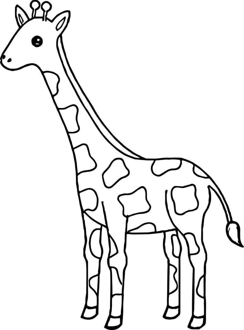 Tall Giraffe Coloring Page | Giraffe coloring pages ...