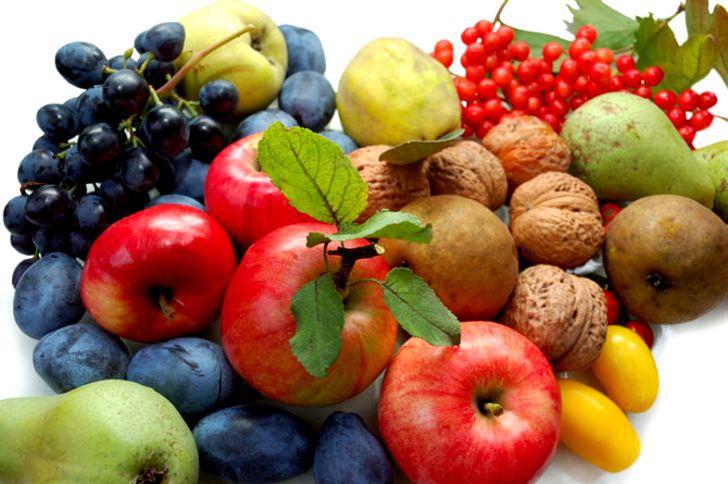 Maigrir : effets de différents régimes sur les dépôts de graisse dans les organes