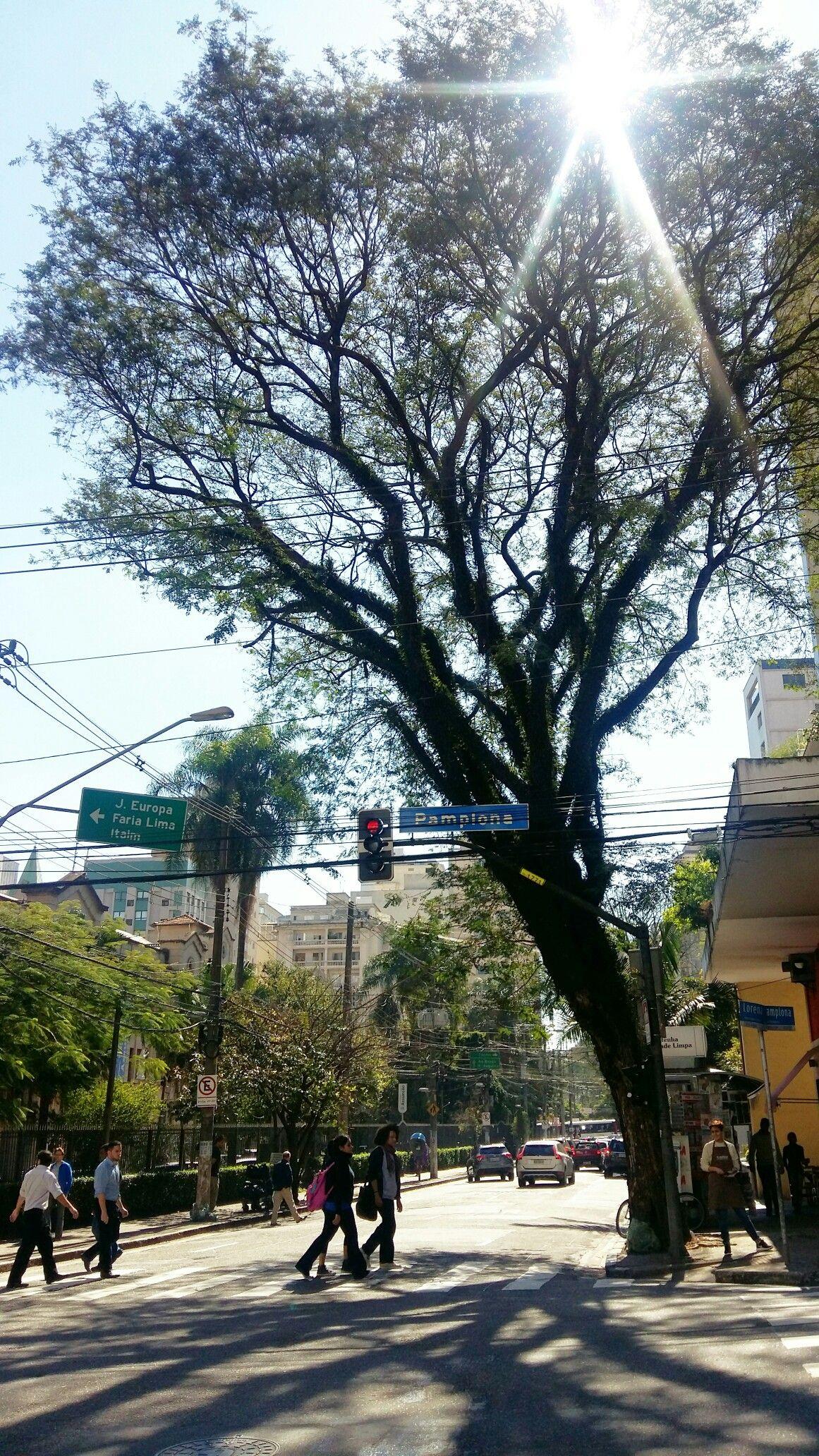 Rua Pamplona, esquina com a Alameda Lorena São Paulo SP
