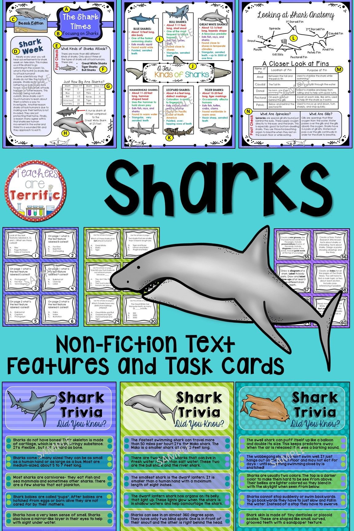 Sharks Non Fiction Text Features And Task Cards