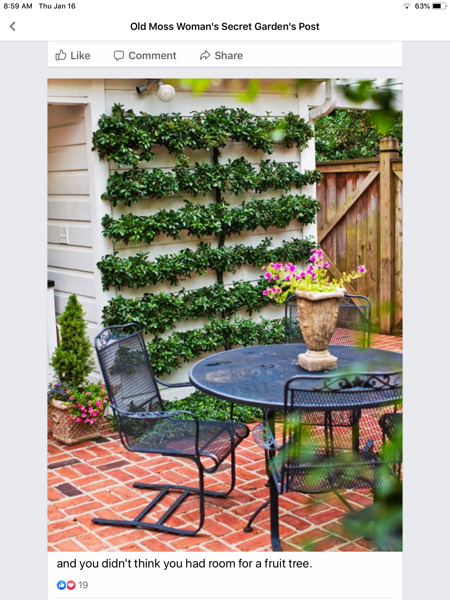 Pin by Cecilia Funk on Smithfield in 2020 Small garden