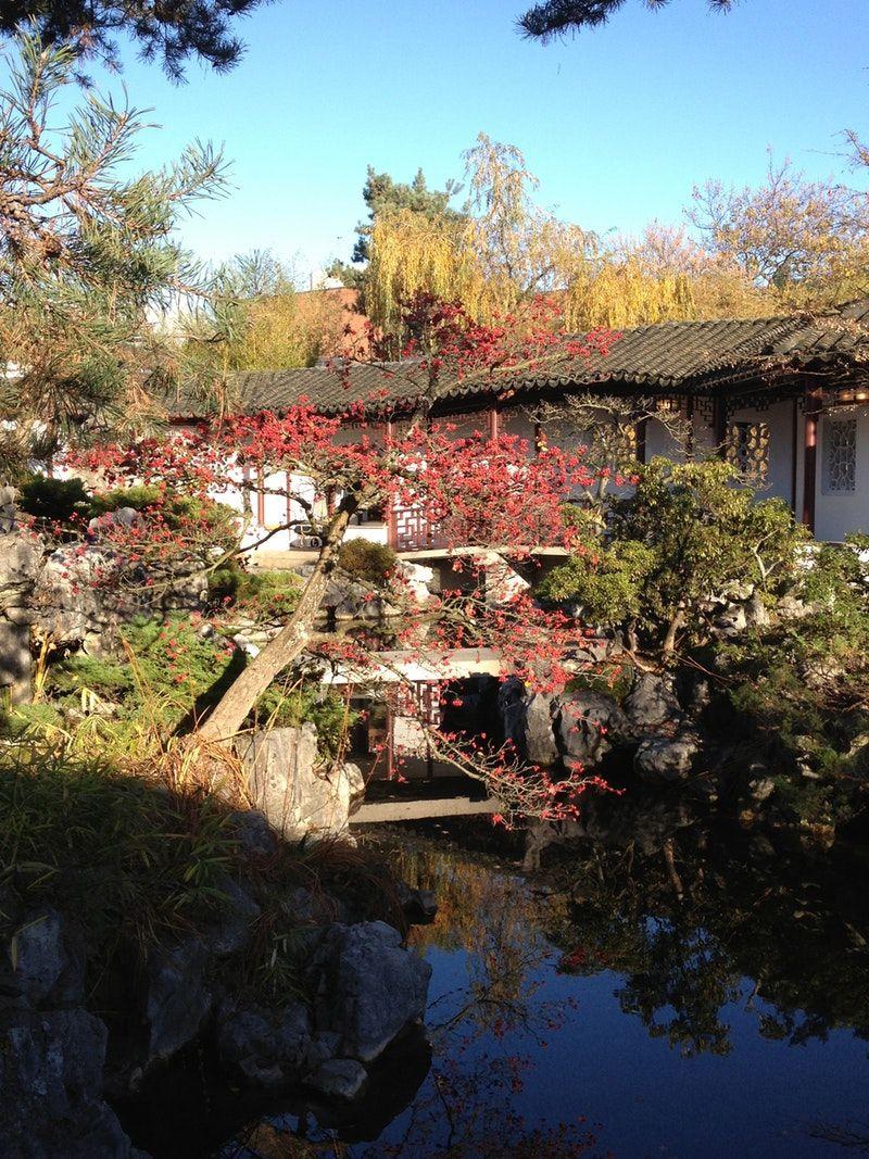 Garden Visit: Dr. Sun Yat-Sen Classical Chinese Garden | Chinese ...