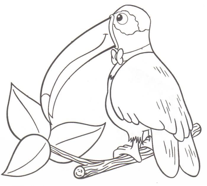 Paisajes De Animales Para Colorear Imagui Dibujos Animalitos