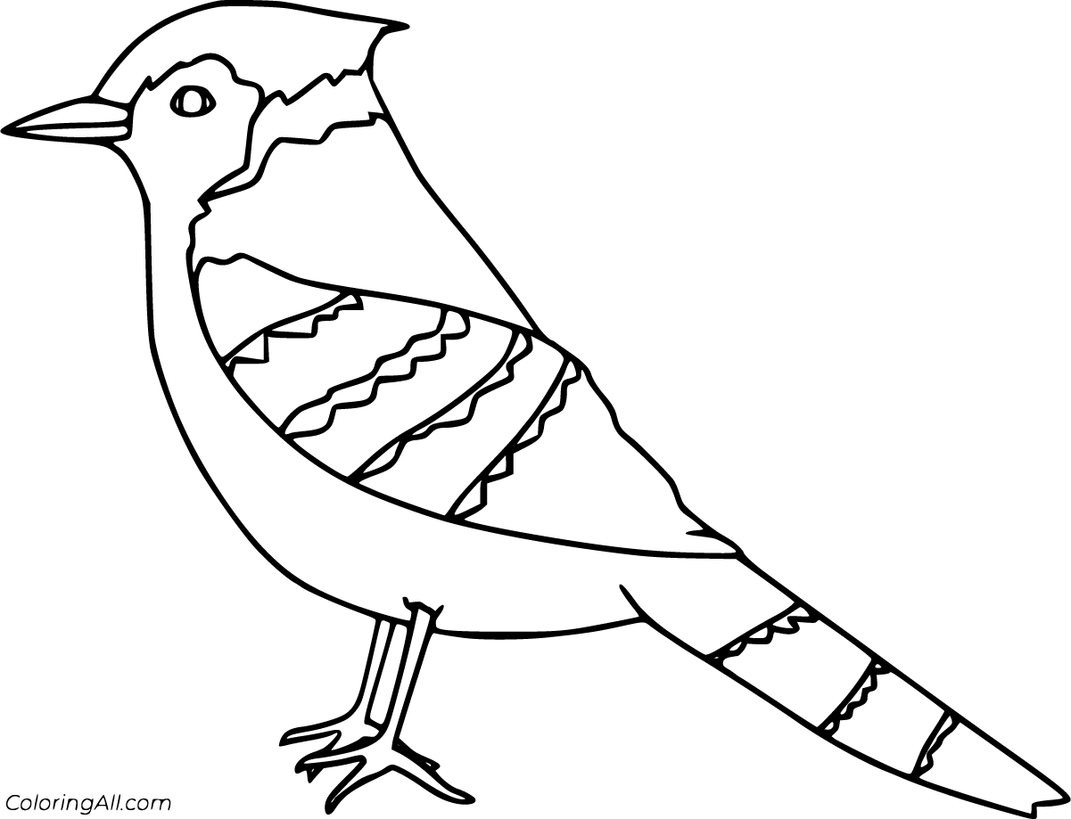 16 Free Printable Blue Jay Coloring Pages In Vector Format Easy To Print From Any Device And Automatically Fit Any Coloring Pages Blue Jay Bird Coloring Pages