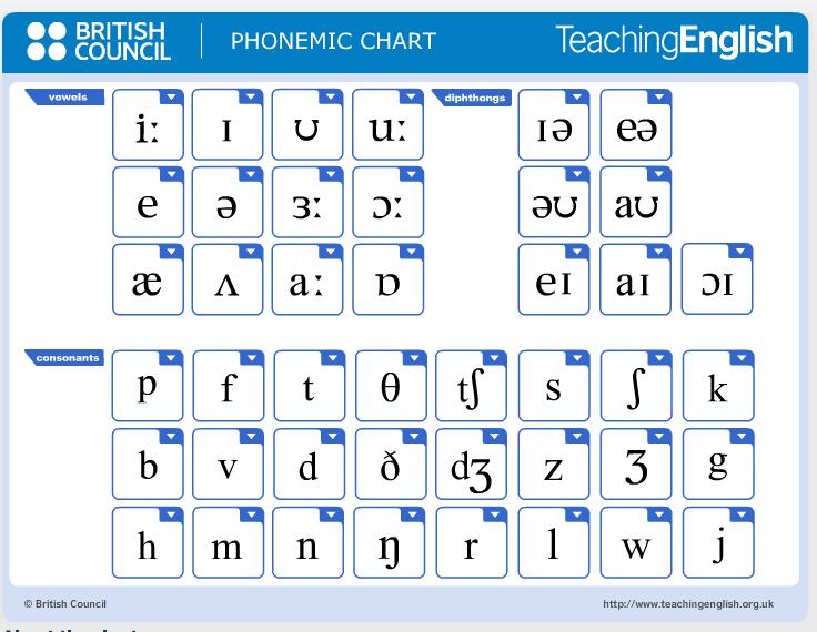 Pin by Lauren Michelle on Teaching | Pinterest | Phonetic alphabet ...