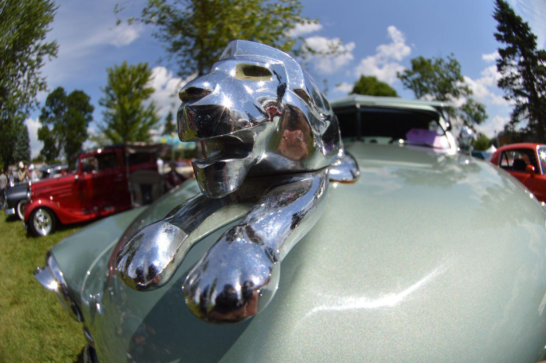 Rassemblement Granby international 2014 voitures anciennes du Québec 33e édition.  Lion en figure de proue de calandre