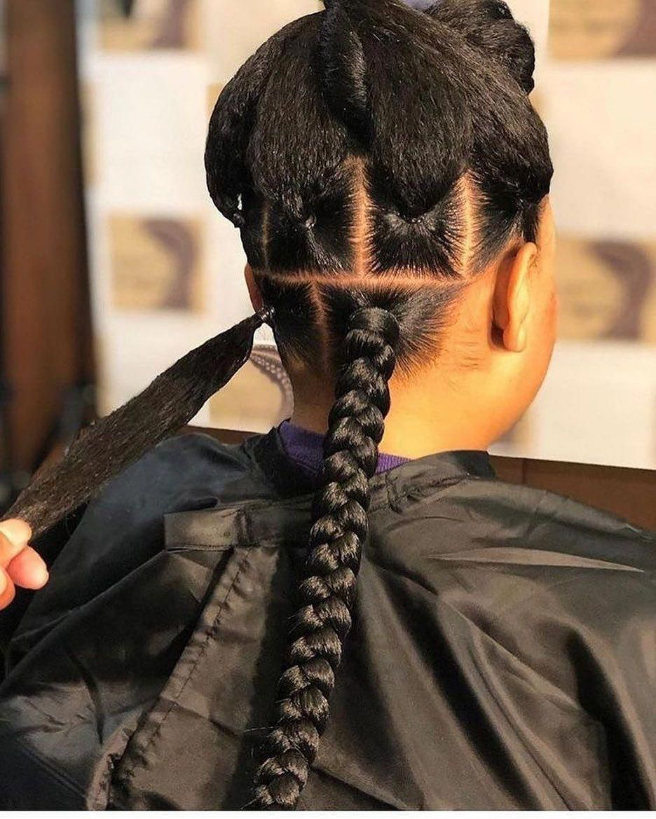 20 Hottest Hair Color Trends For Women Pouted Com Big Box Braids Hairstyles Braided Hairstyles African Braids Hairstyles
