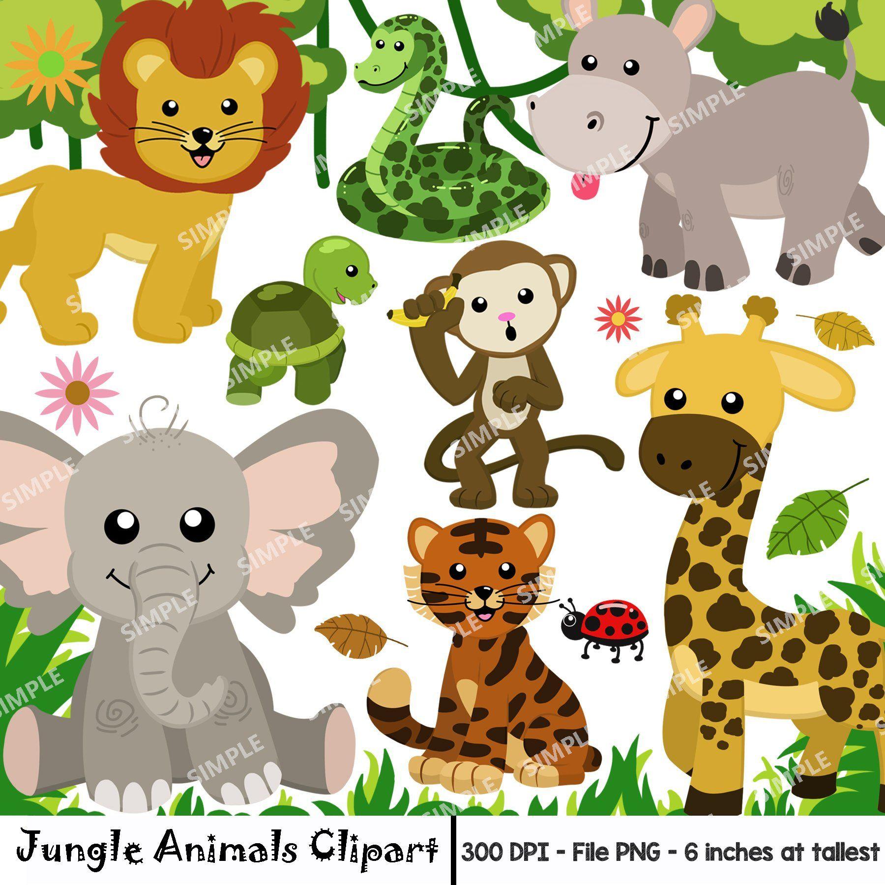 Jungle Animal Clipart Watercolor Safari Animals Clipart Animal Clipart Safari Animals Clipart Set Zoo Animal Ins Animal Clipart Zoo Animals Safari Animals