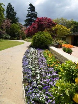 Beautiful Garden Images And Tips Menlo Park Sunset Magazine Bay Area Housing