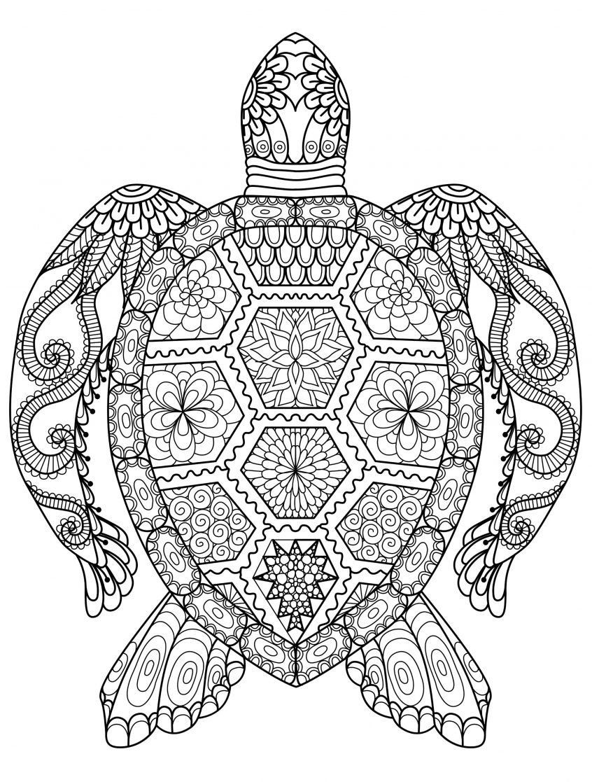 Intricate Printable Coloring Pages For Adults Gel Pens Mandala Pattern Pdf Jpg Instant Download Mandala Coloring Pages Coloring Pages Love Coloring Pages