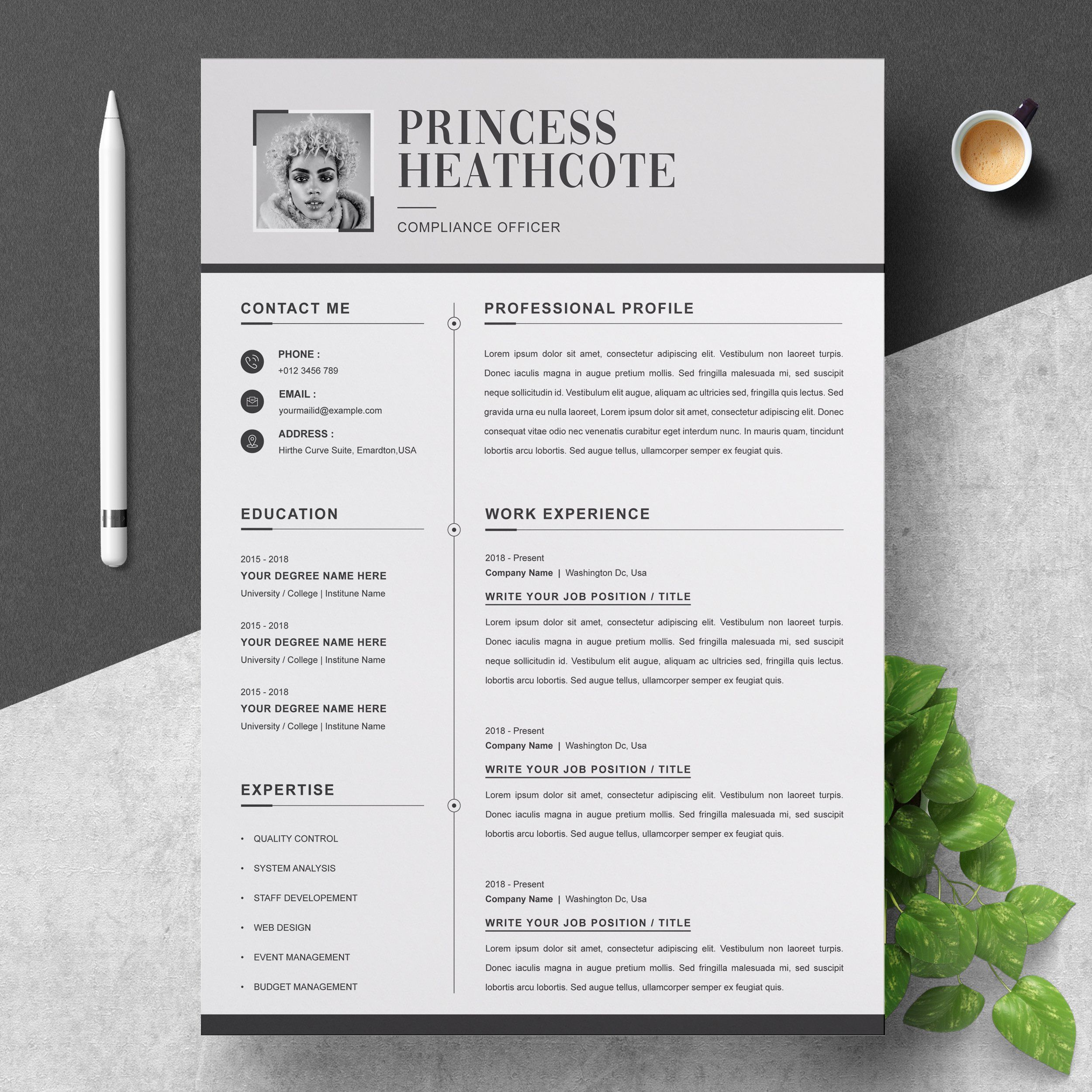 3 pages clean cv template