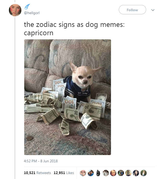 The 12 Zodiac Signs As Dog Memes Zodiac Signs Capricorn Zodiac Capricorn