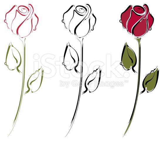 Line Art Rose Tattoo : Rosebud line art royalty free stock vector rose