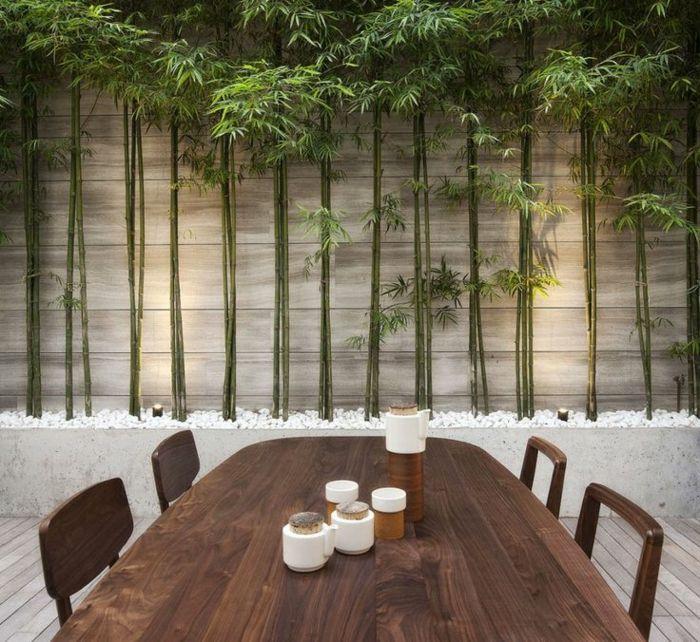 Comment planter des bambous dans son jardin planter bambou bambou et contemporain - Planter des bambous dans son jardin ...