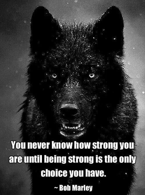 You Never Know How Strong You Are Until The Meaning Of Life