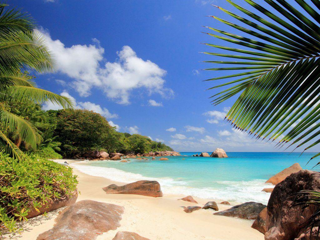 Praslin Island, Seychelles | Seychelles islands, Island wallpaper, Praslin seychelles