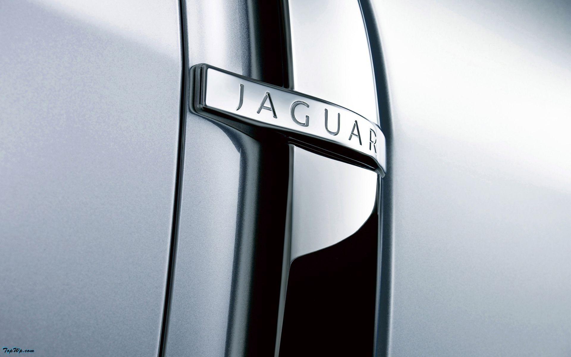 jaguar f detail Jaguar xf, Jaguar emblem, Logo design