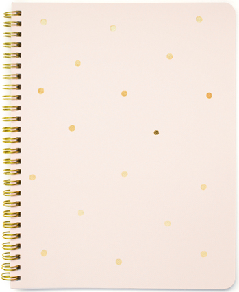 Sugar Paper LA Gold Dot Notebook in Pink