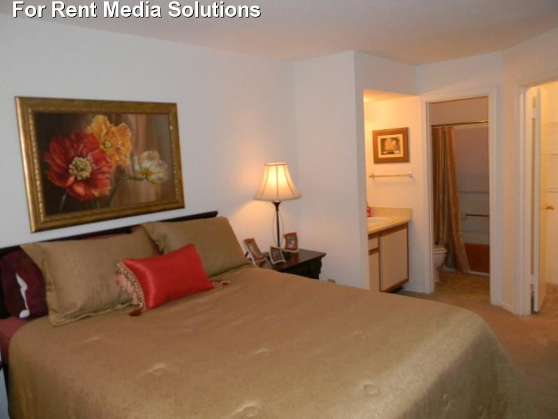 Royal Pointe Apartments For Rent In Virginia Beach Virginia Apartment Rental And Community Details Forre Apartments For Rent Virginia Apartments Apartment