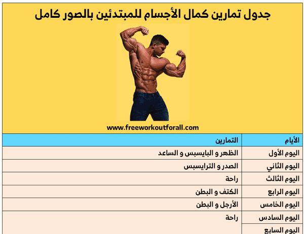 جدول تمارين كمال الاجسام للمبتدئين بالصور كامل Workout Workout For Beginners Beginners