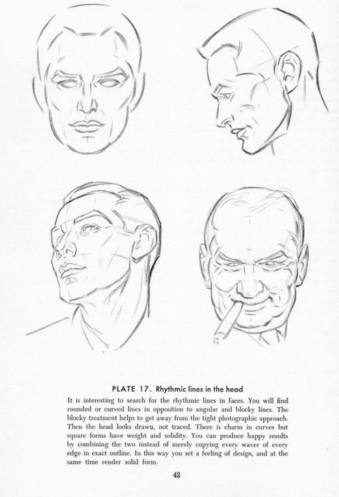 How to draw the male head anatomy - Andrew Loomis tutorials 2014 (5 ...