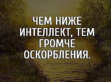 Odnoklassniki Brainy Quotes Wisdom Quotes Russian Quotes
