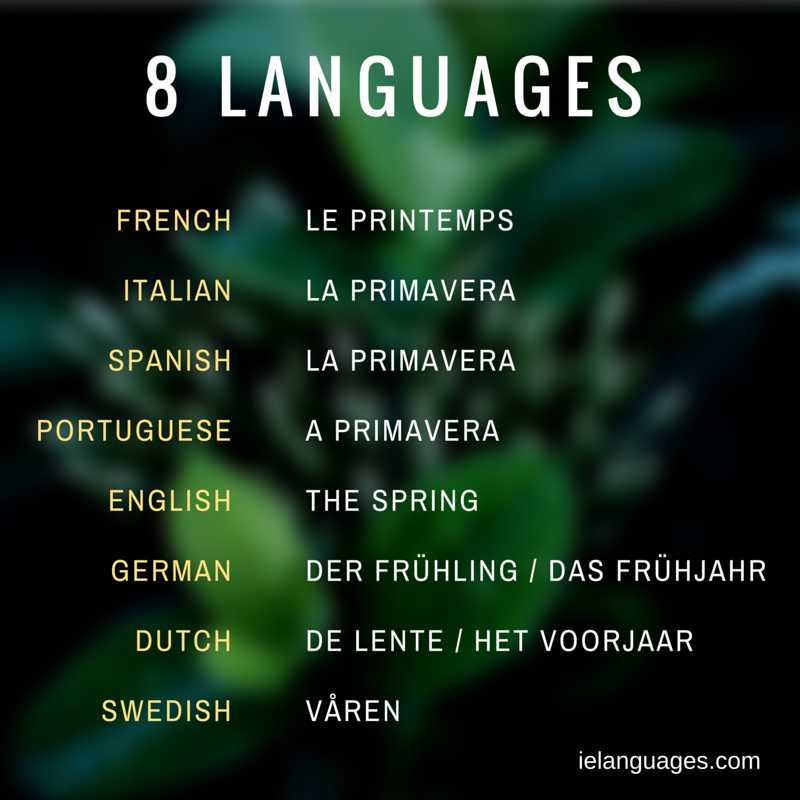 Comparative Vocabulary Lists Learn Several Languages Together Portuguese Language Learning Language Vocabulary List