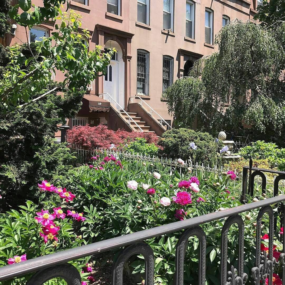 Rents In New York City: Brooklyn Houses - Find No Broker Fee Apartments In NYC With RDNY.com.