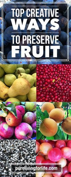 Exhaustive creative list of how to preserve fruit fruit exhaustive creative list of how to preserve fruit pure living for life forumfinder Gallery