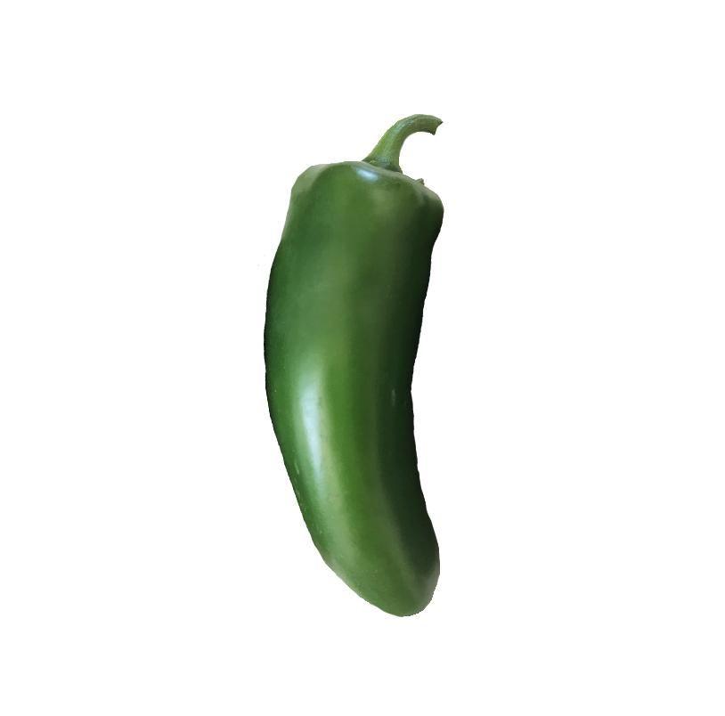 20 Seeds Pepper Seeds HOT ANCHO GRANDE Medium Hot Vegetable