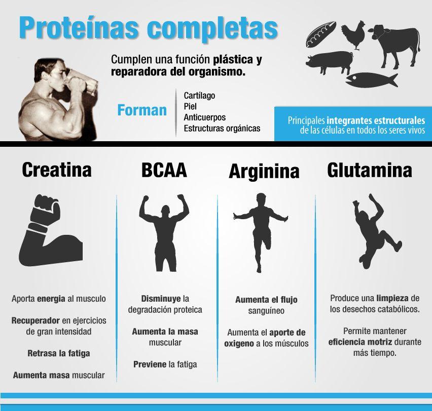 Cuánta Proteína Tomar Para Ganar Masa Muscular Y Fuerza Rutina Para Masa Muscular Nutricion Y Ejercicio Salud Y Deporte