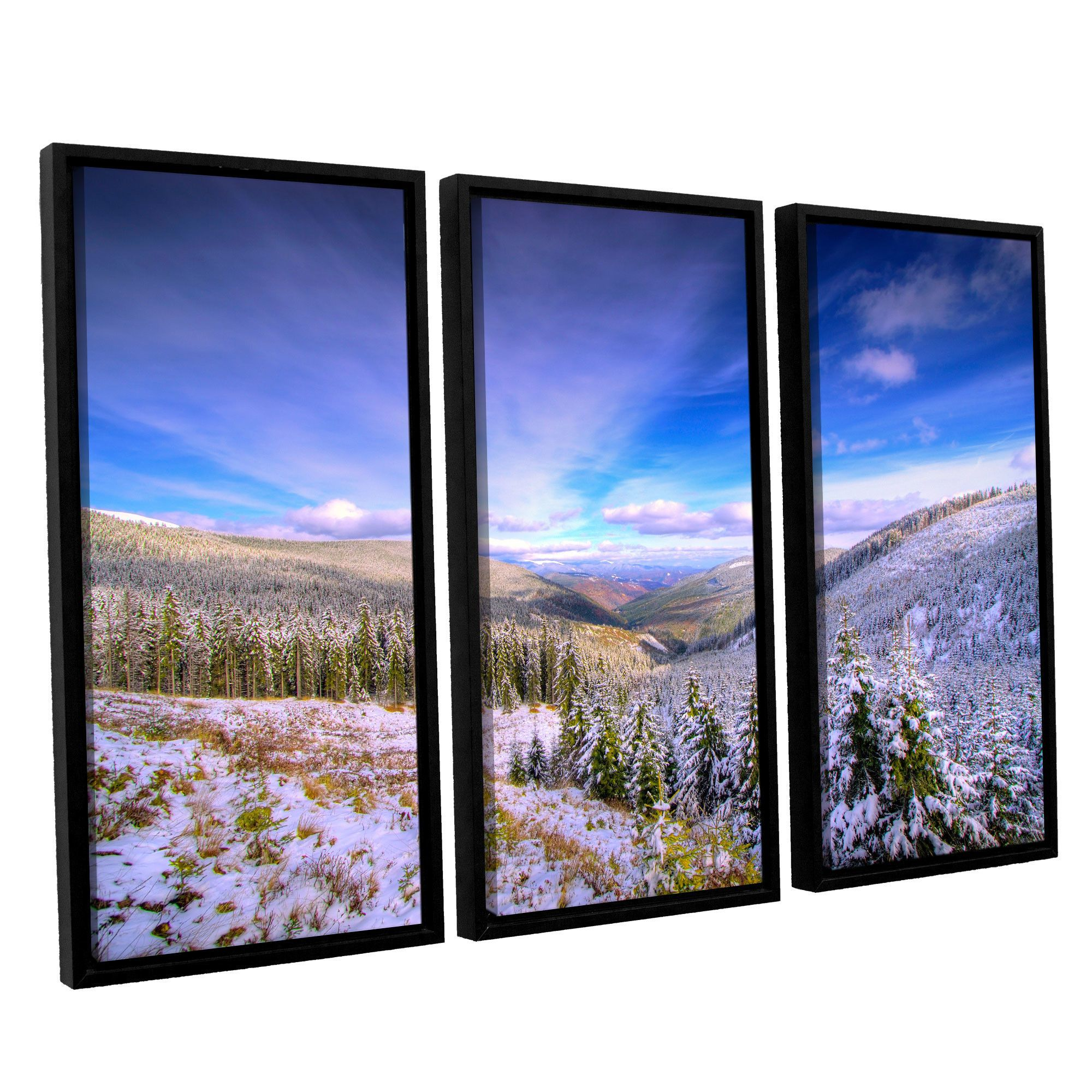 Winter Lands II by Dragos Dumitrascu 3 Piece Floater Framed Photographic Print on Canvas Set