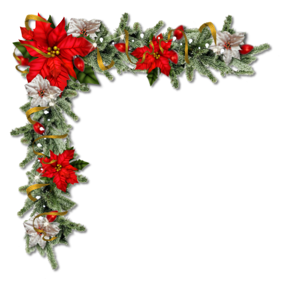 Pretty Christmas floral corner with Poinsettia's in .png