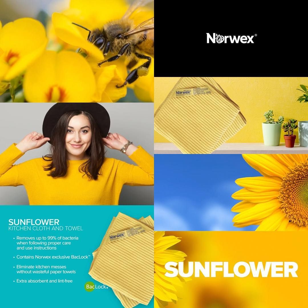 Norwex Color Story Sunflower Kitchen Cloth And Towel Ditch The