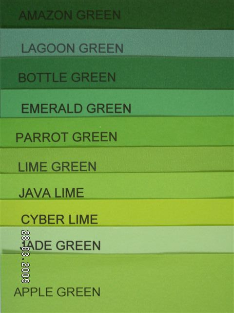 Diffe Shades Of Green Paint Bright Board Emerald A4 Size 100 S