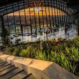 Sky Garden - Thrillist London   Things To Do In London, Sky Garden, Best Rooftop Bars